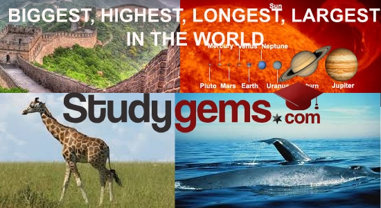 biggest, highest, longest, largest in the world in the world