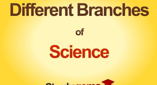 different branches of Science